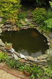 pond 9636