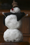 Antarctic Snowman