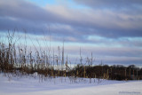 Winter Landscape (5830)