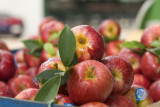 Thai Apples