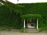 Vine covered abandoned office building .. 4845