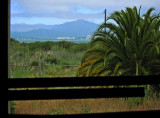 Window view from inside the Winehaven .. 4849