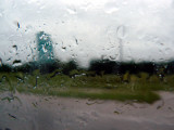 Roadside by Rain