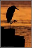 Kata at Sunset...