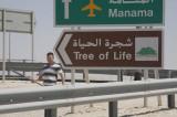 Brims' Tree of Life