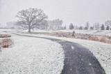 12/5/09 - 1st Snow of Season