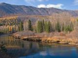 zP1020825 Wild locale at McDonald Creek bridge near Apgar in Glacier National Park.jpg
