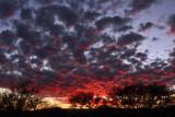 IMG_6898 Sunset.jpg
