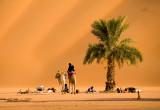 Mauritania November 2007