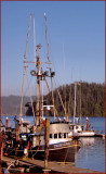 Fish Boat Thunder.jpg