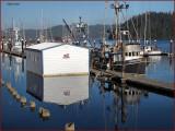 Fish Boats Florence Oregon.jpg