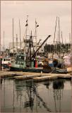 Fish Boat Ranger