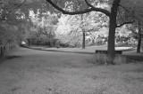 IR park.jpg