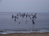 Barge Bones
