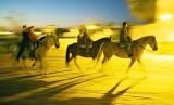 Dusk Riders - El Rocio