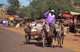 Donkey Power, Kenya