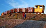 Bog Train 2