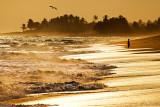 Brenu Beach 10