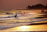Brenu Beach 14
