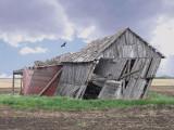 Ex-rural life
