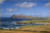 Ireland - Co.Kerry - Dingle Peninsula - Clogher Head