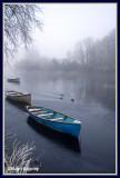 Ireland - Co Sligo - Sligo - Frosty morning on Lough Gill at Doorly Park