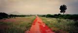 Red Dirt Road Panorama