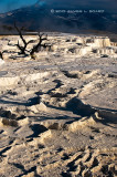 Dry Terraces, Mammoth Hot Springs
