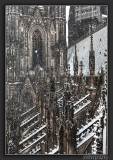 Cologne Cathedral in Snow Flurry
