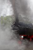 Steam Train Rasender Roland, Island of Ruegen
