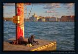 Venice, Fondamenta Zattere
