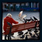 Feeding pigeons in Cannaregio
