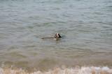 A dip in Lake Superior