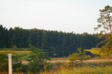 Au Train River Delta 4