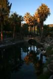 Evening Light at Warner Springs