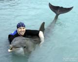 Dolphin at Hawk's Cay