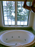 Winvian Bath With a View