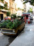 Flowering car