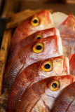 From the Fish market