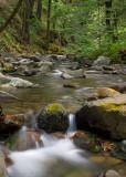 Uvas Creek