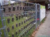 2009-12-02 Garden