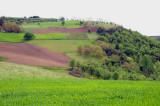Tresnjica 2010