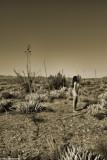 IMG_0515 (Desert Home)
