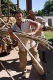 Unloading Sugar Cane