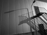 Monochrome galleries