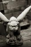 The Resident Gargoyle