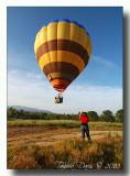 Hot Air Balloons 2010