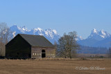 Snohomish, WA Barn 02