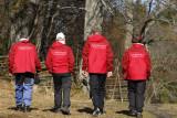 Rödrockar från Norrviken