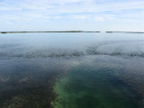Thin line of the Florida Keys